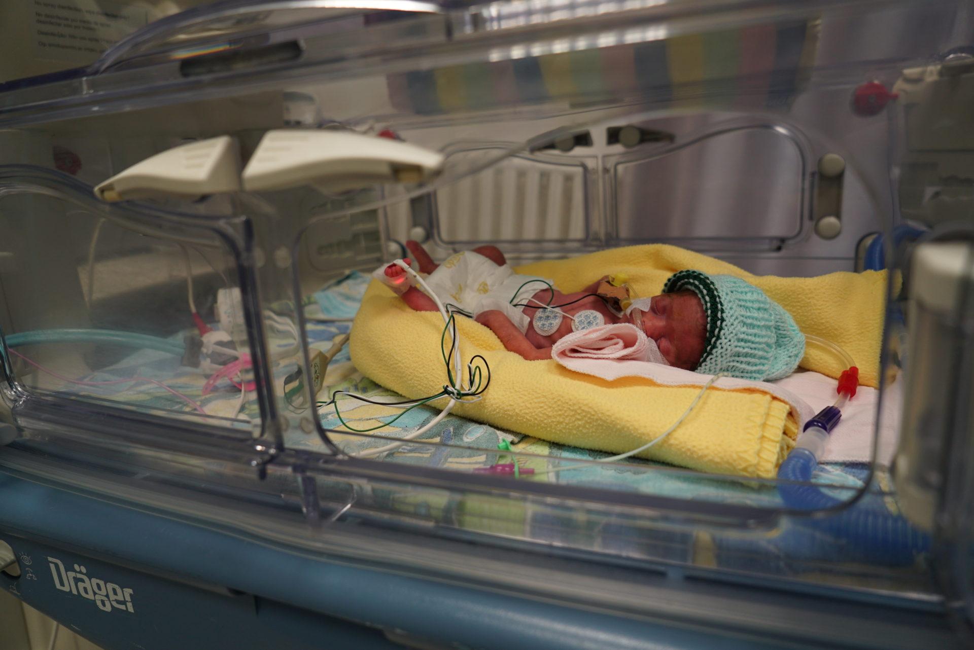 bambino nato prematuro palestina caritas baby hospital