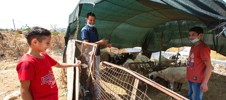 Papà Riad con Qais e Ahmed metre si occupano delle loro pecore