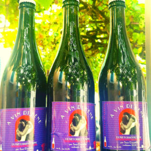Bottiglie della vendemmia 2020